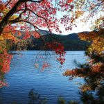 fall colors to inspire your home